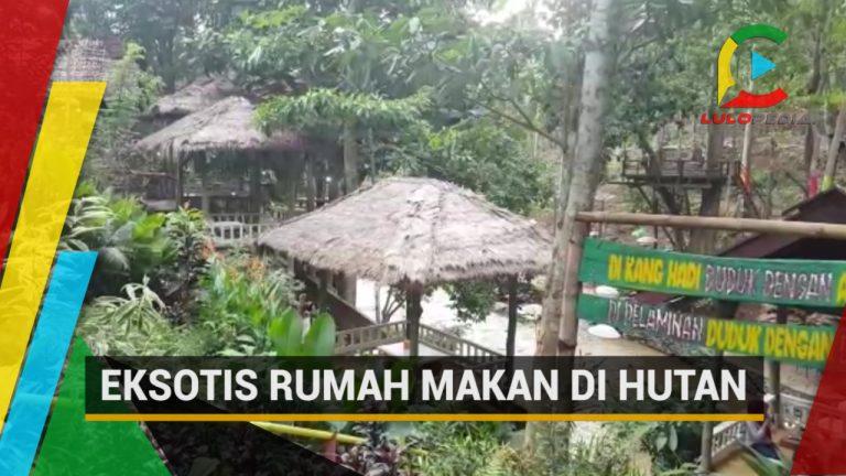Rumah Makan Eksotis di Hutan Kolaka Timur